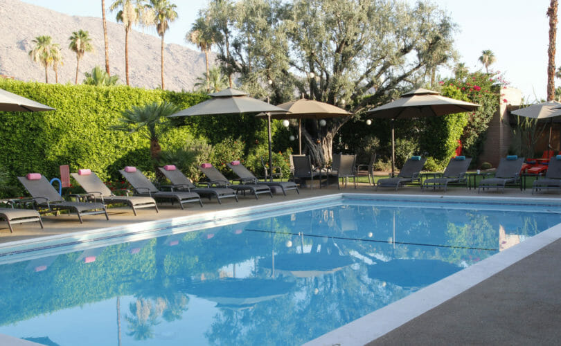 The pool at the Desert Riviera in Palm Springs