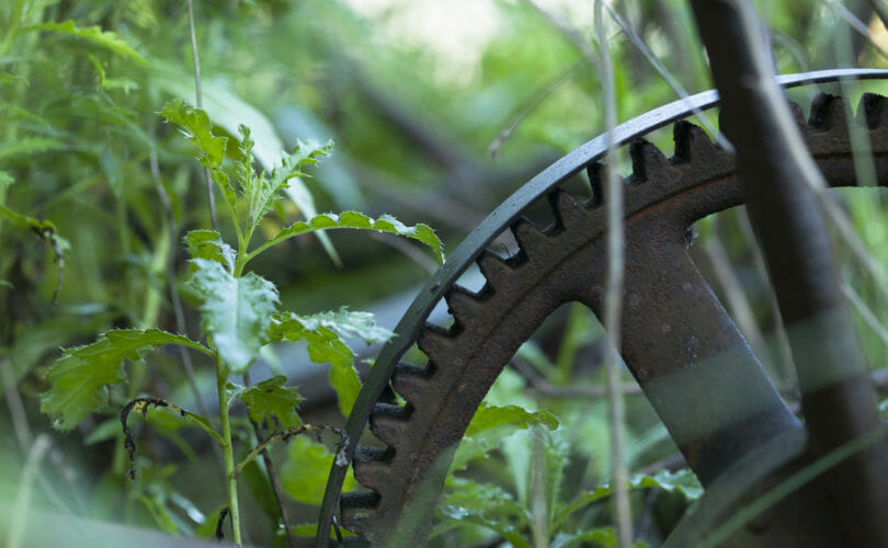 metal wheel in grass