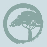 Teal enso logo with a tree