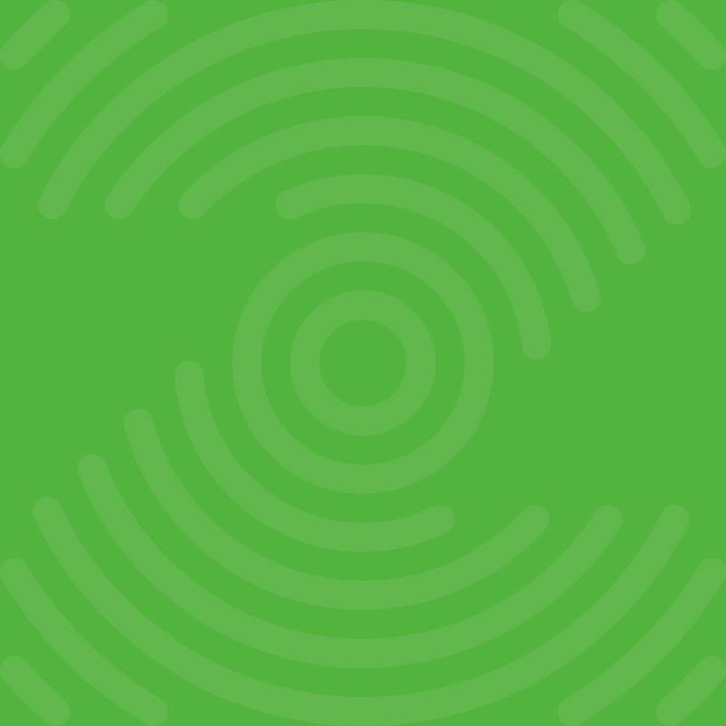 Zen Leader logo in green