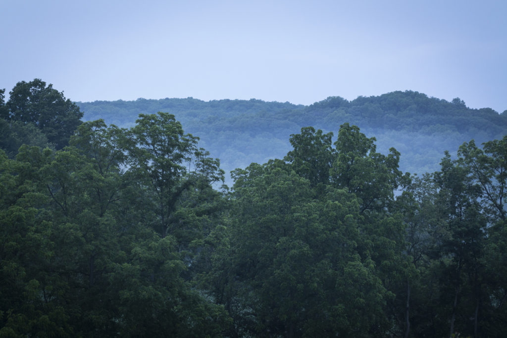 Blue Ridge and fog