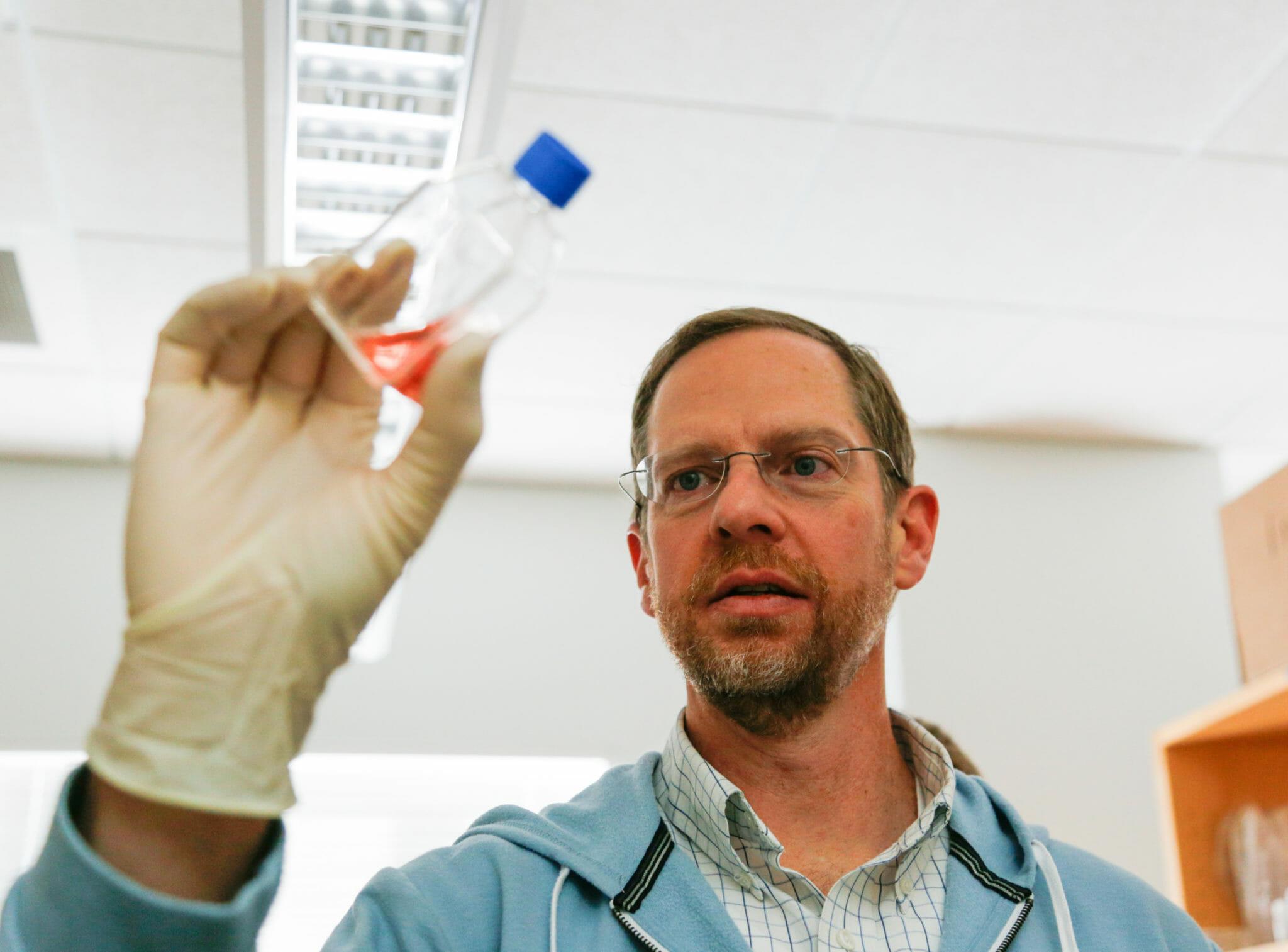 Dr. David Gamm examining sample