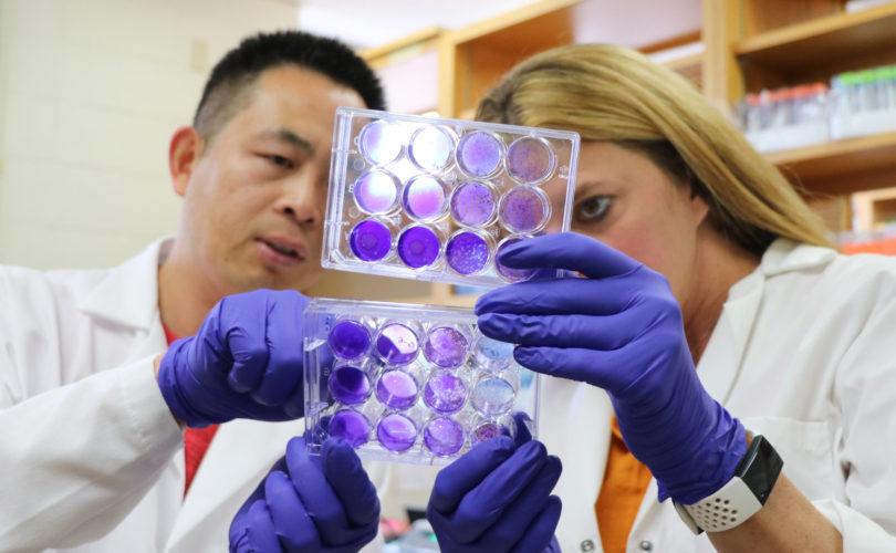 Nuemann Lab researchers analyzing samples