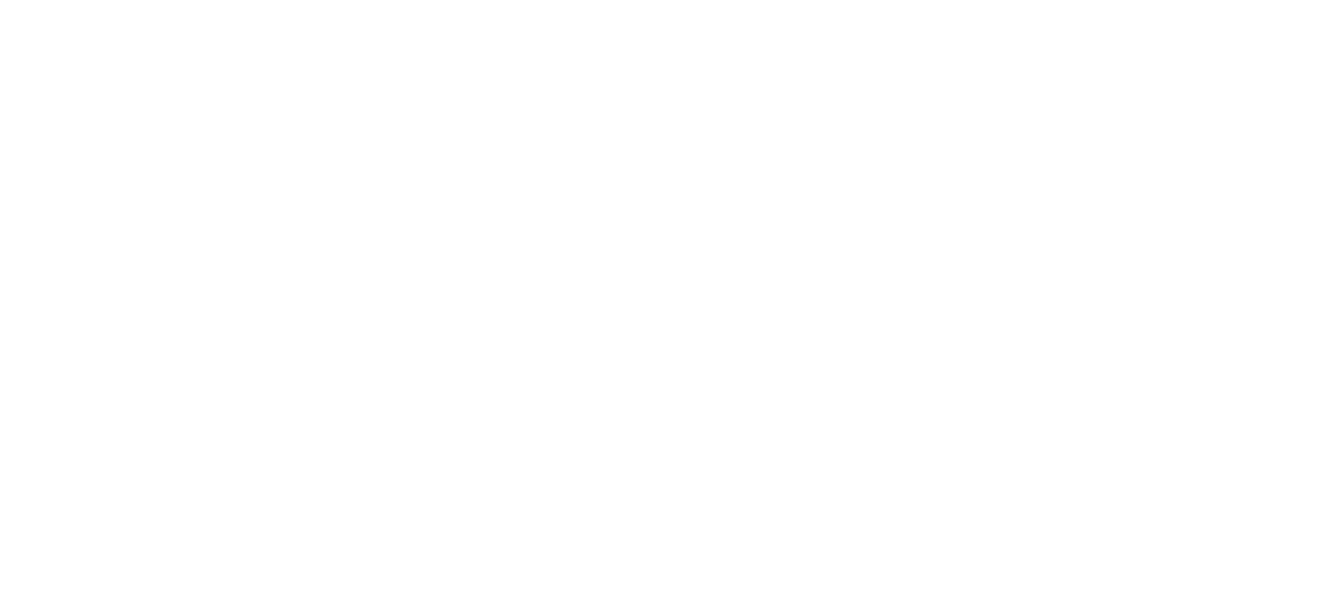 LLogo for Dirigible Studio.