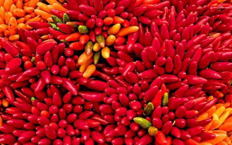 Bunches of peppers
