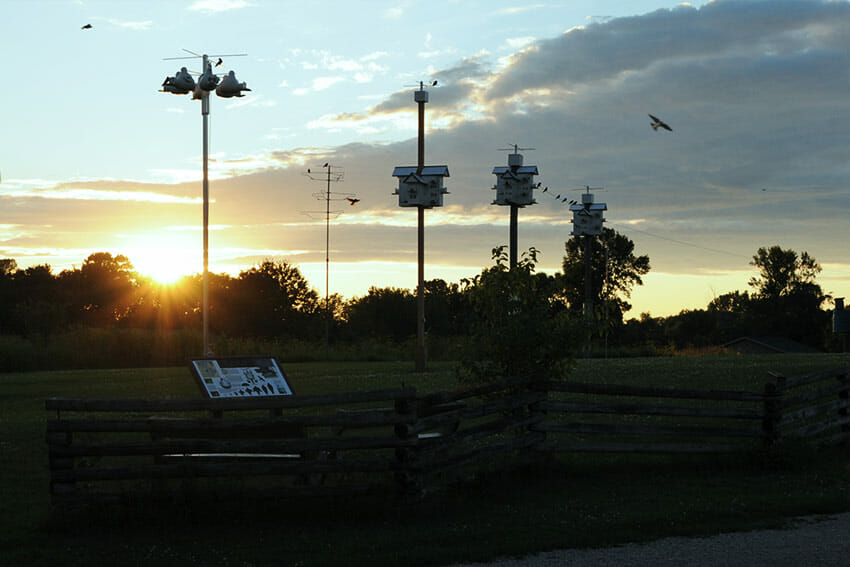 Sunset at the Nature Center